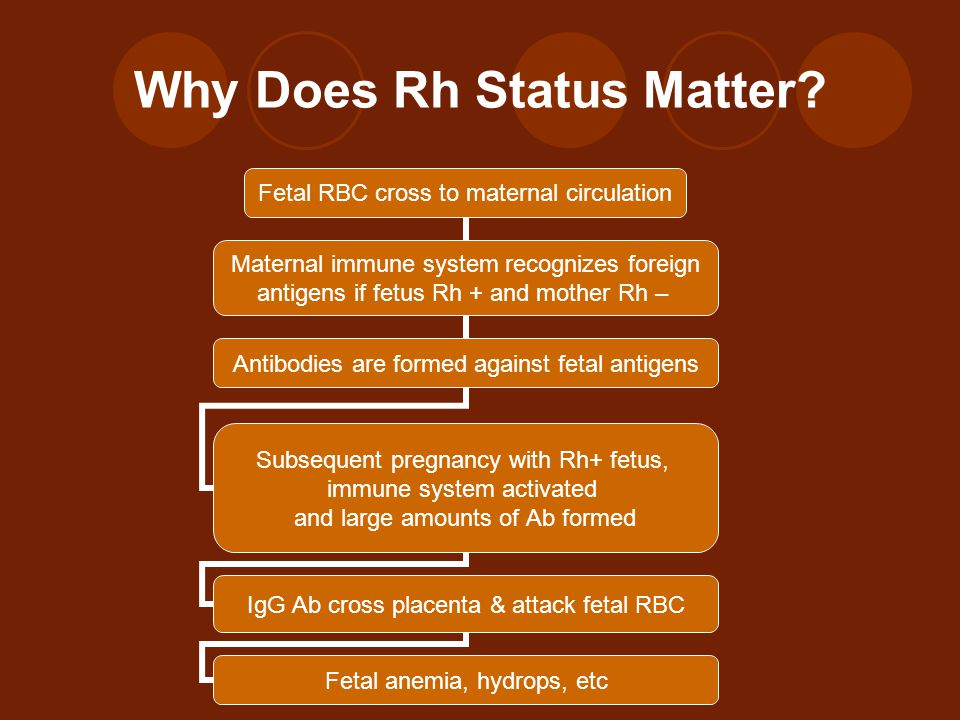 Why Does Rh Status Matter