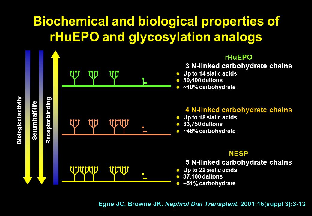Biochemical and biological properties of rHuEPO and glycosylation analogs
