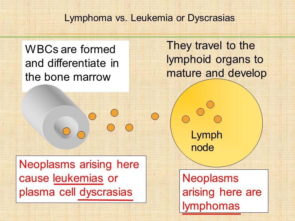 Lymphoma vs. Leukemia or Dyscrasias
