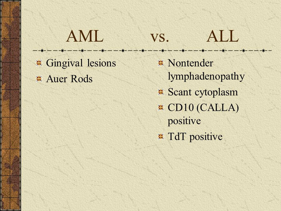 AML vs. ALL Gingival lesions Auer Rods Nontender lymphadenopathy