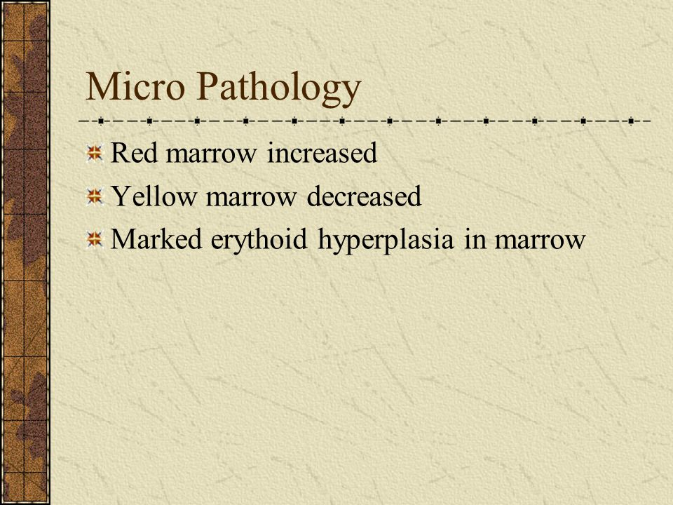 Micro Pathology Red marrow increased Yellow marrow decreased