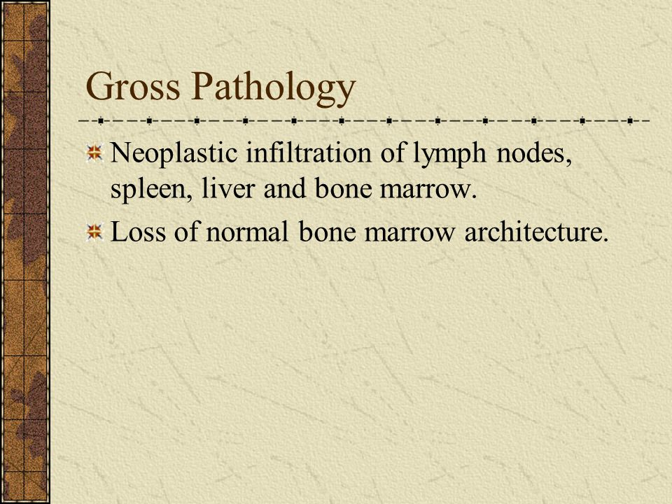Gross Pathology Neoplastic infiltration of lymph nodes, spleen, liver and bone marrow.