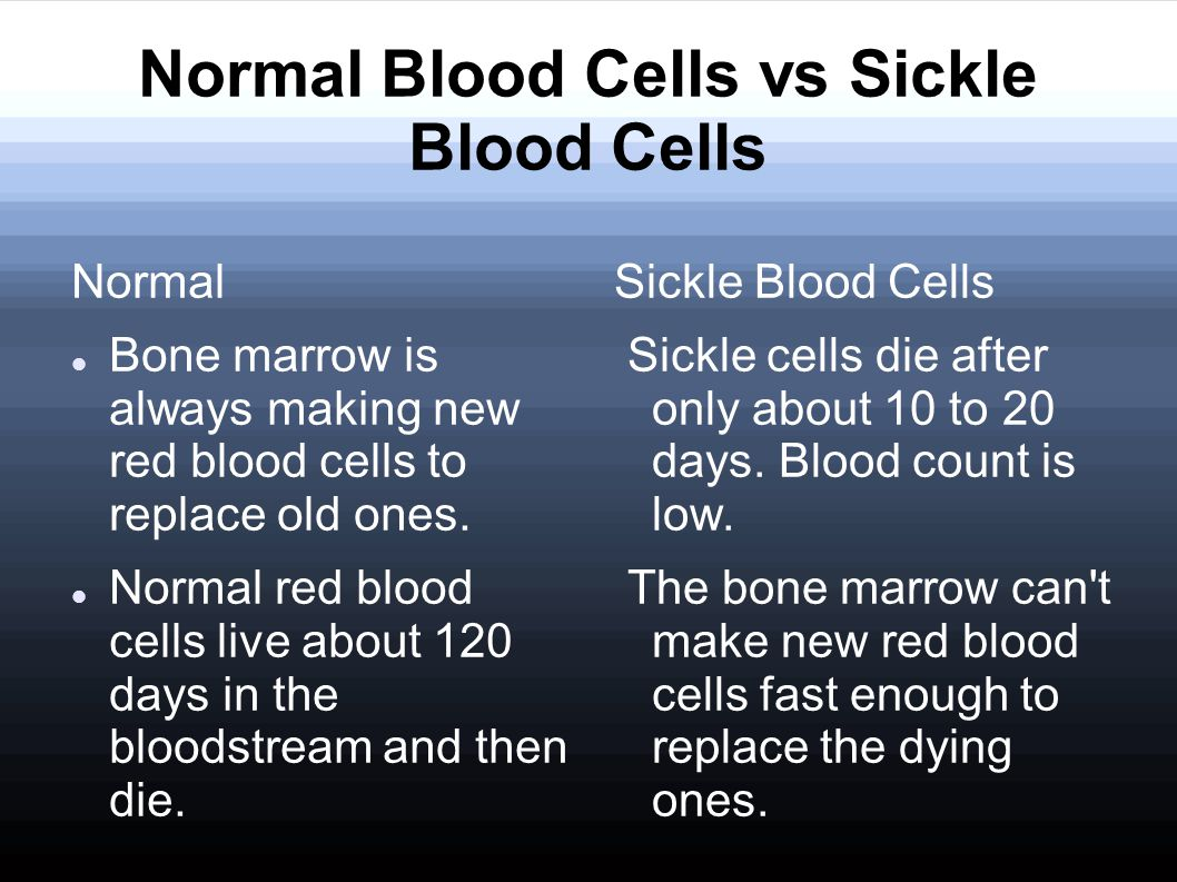 Normal Blood Cells vs Sickle Blood Cells