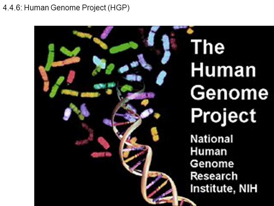 4.4.6: Human Genome Project (HGP)