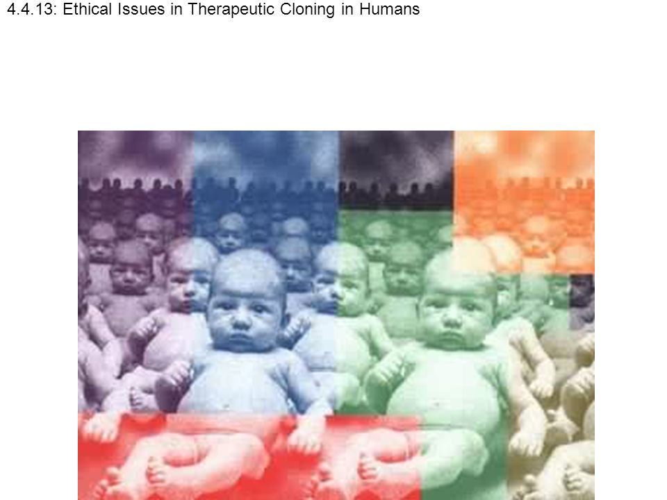4.4.13: Ethical Issues in Therapeutic Cloning in Humans
