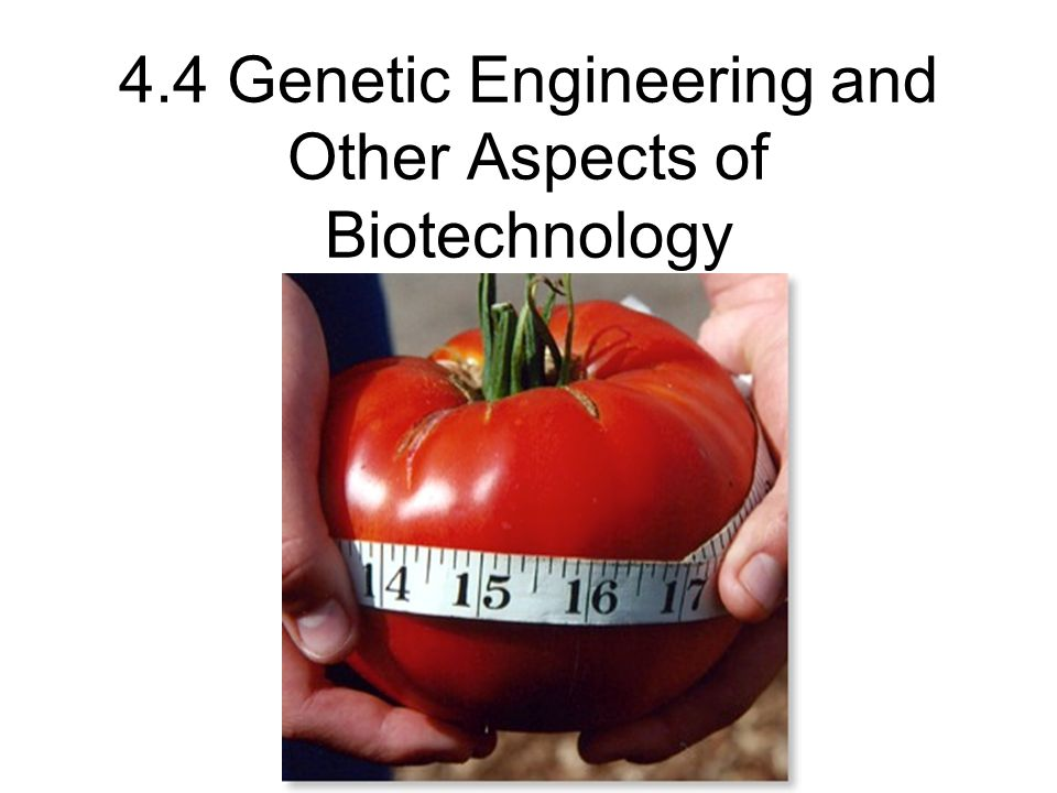 4.4 Genetic Engineering and Other Aspects of Biotechnology