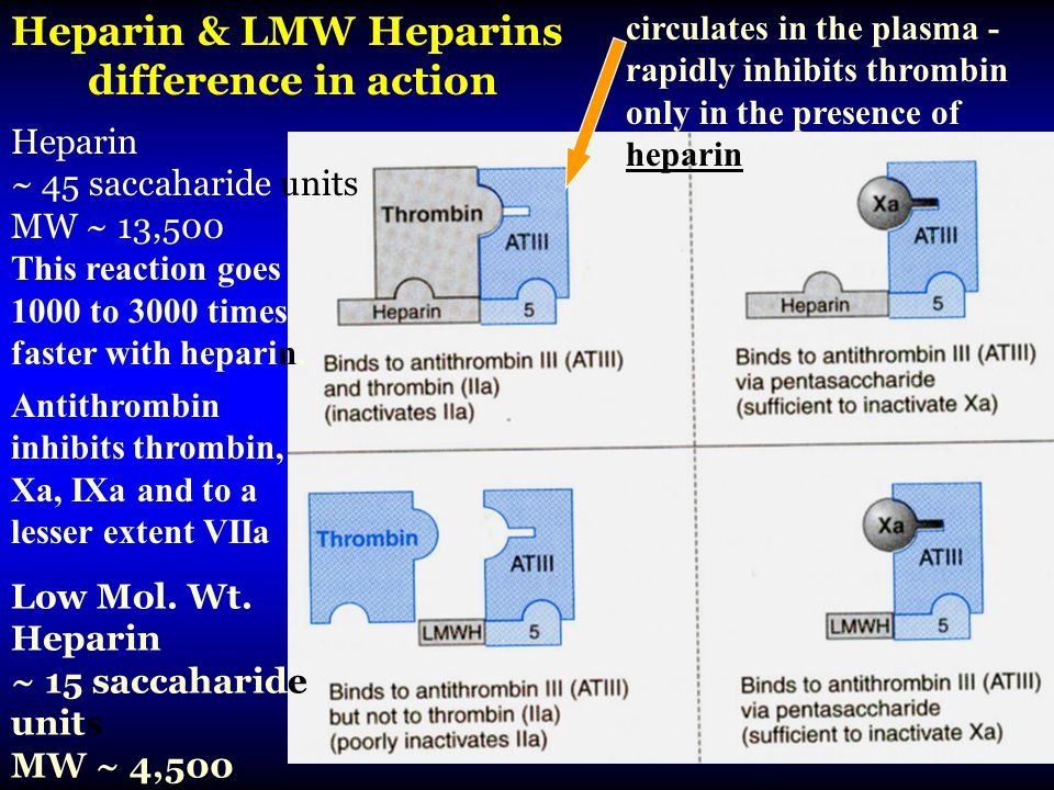 Heparin & LMW Heparins difference in action