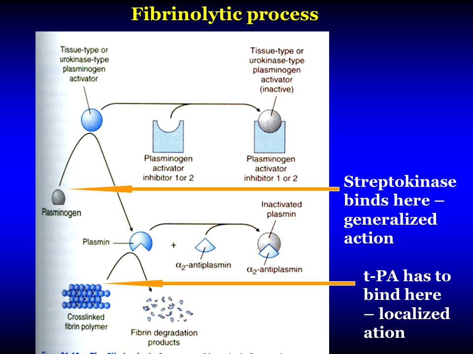 Fibrinolytic process Streptokinase binds here – generalized action