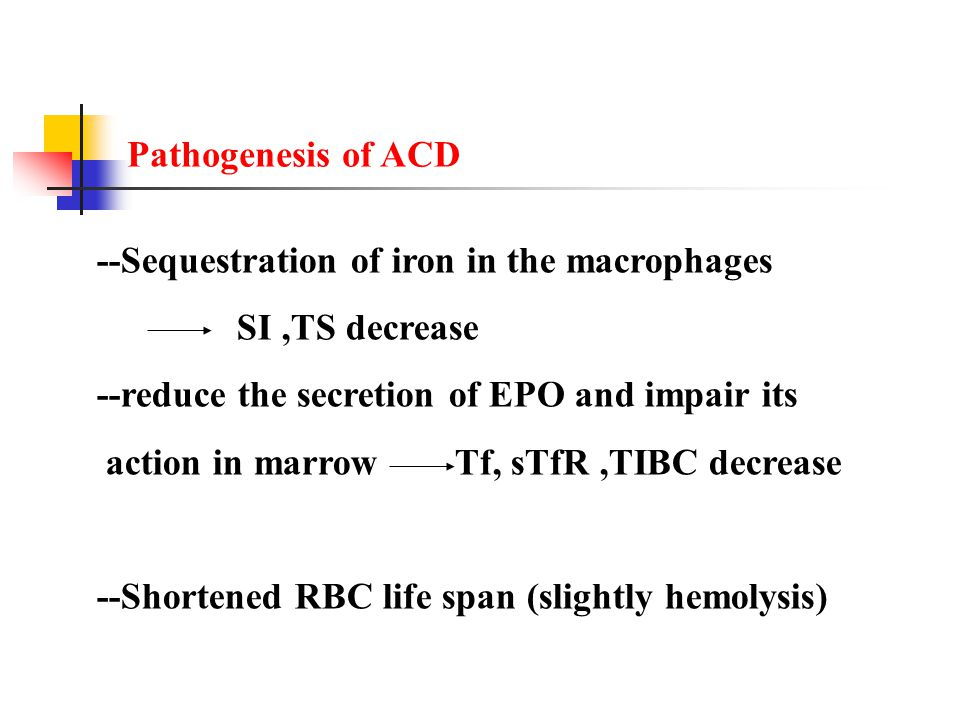 Pathogenesis of ACD --Sequestration of iron in the macrophages. SI ,TS decrease. --reduce the secretion of EPO and impair its.