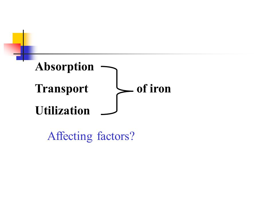 Absorption Transport of iron Utilization Affecting factors