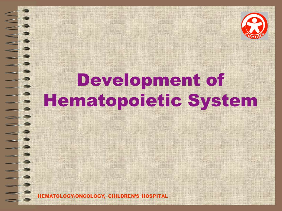Development of Hematopoietic System