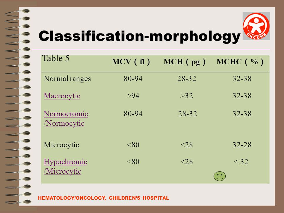 Classification-morphology