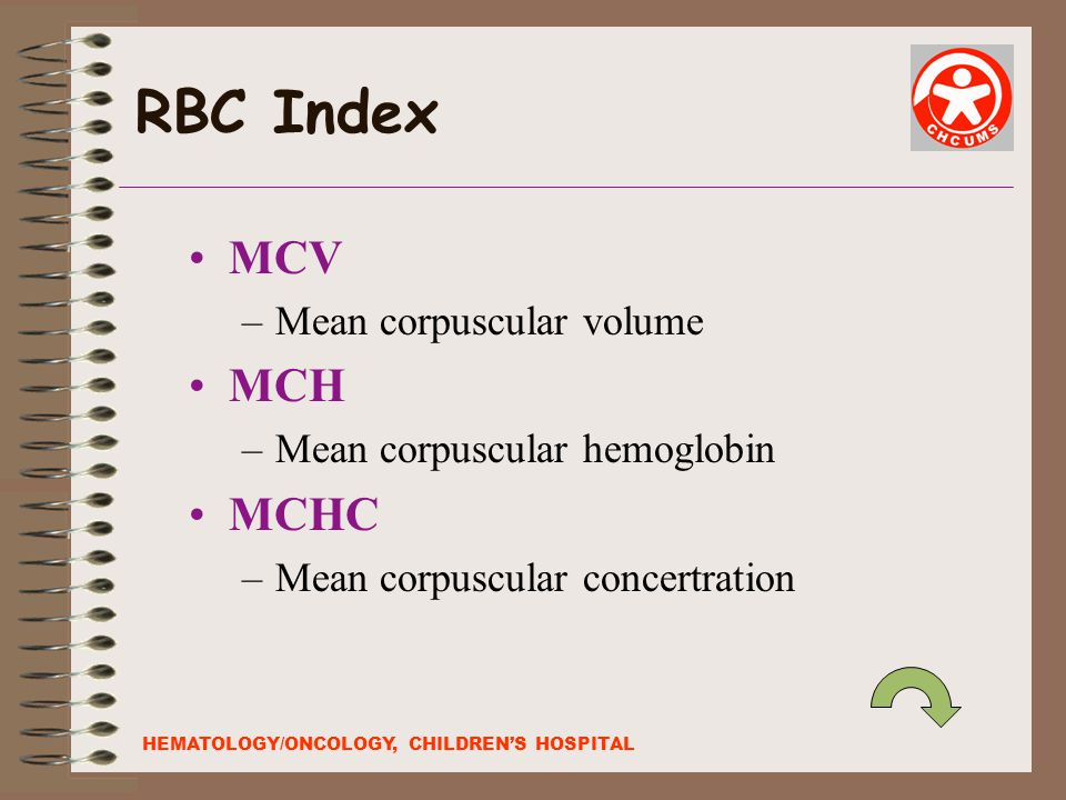 RBC Index MCV MCH MCHC Mean corpuscular volume