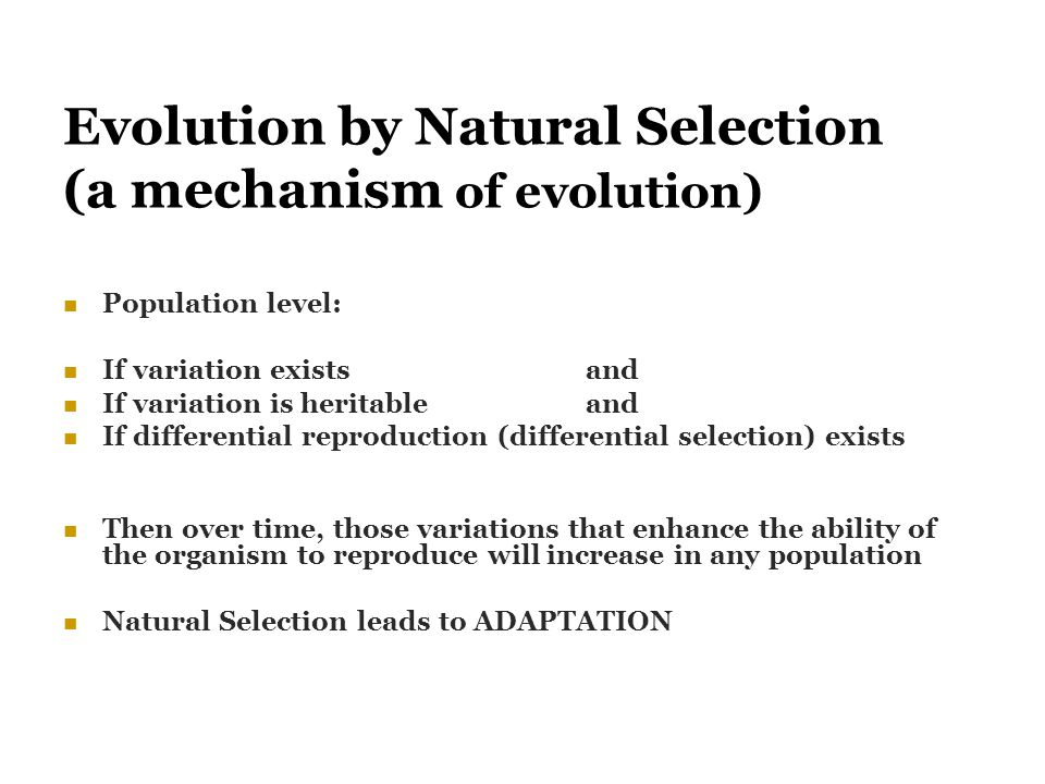 Evolution by Natural Selection (a mechanism of evolution)