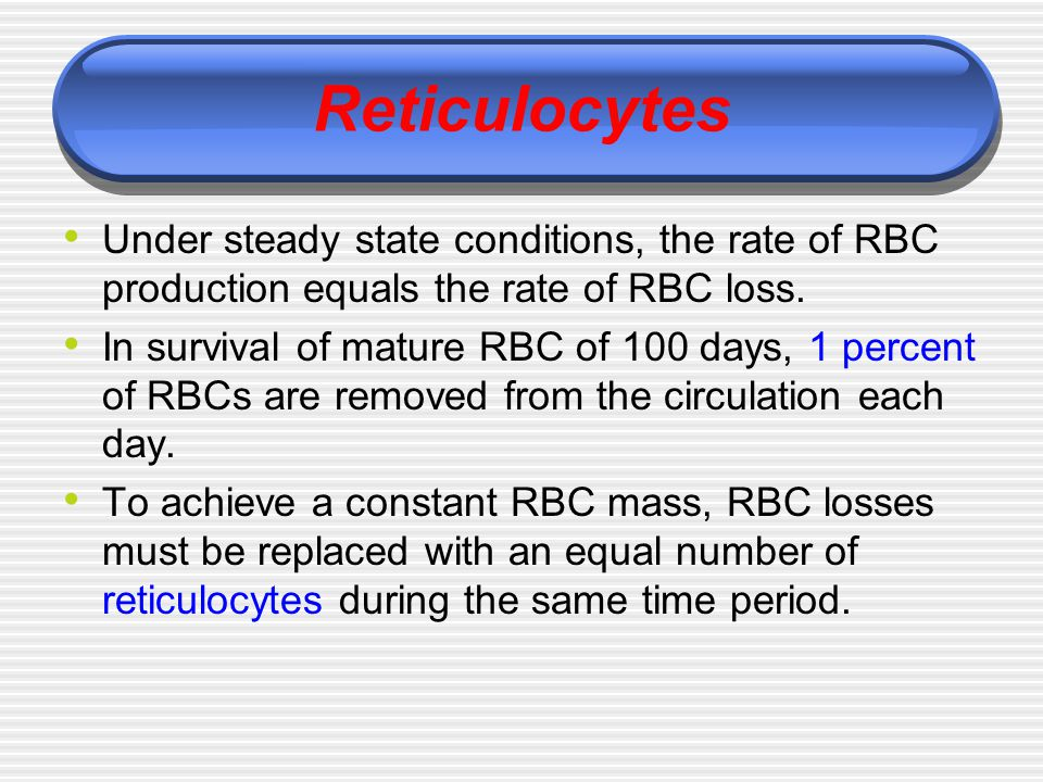 Reticulocytes Under steady state conditions, the rate of RBC production equals the rate of RBC loss.