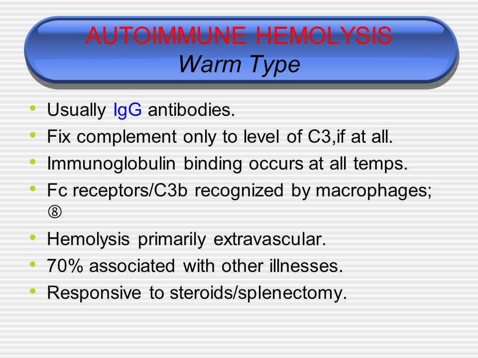 AUTOIMMUNE HEMOLYSIS Warm Type