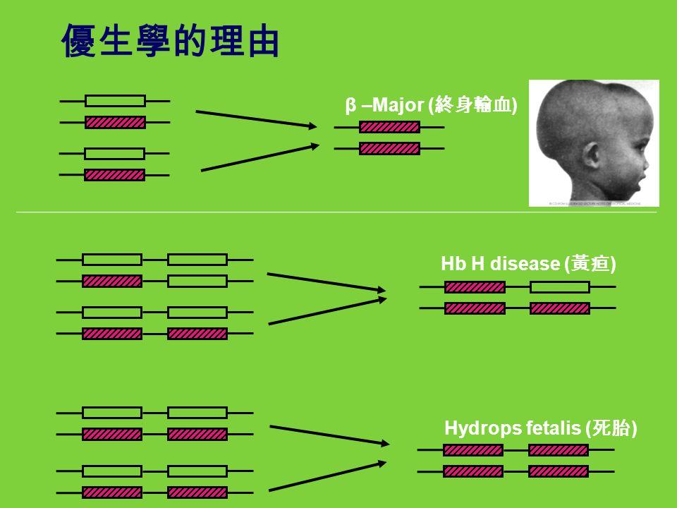 優生學的理由 β –Major (終身輸血) Hb H disease (黃疸) Hydrops fetalis (死胎)