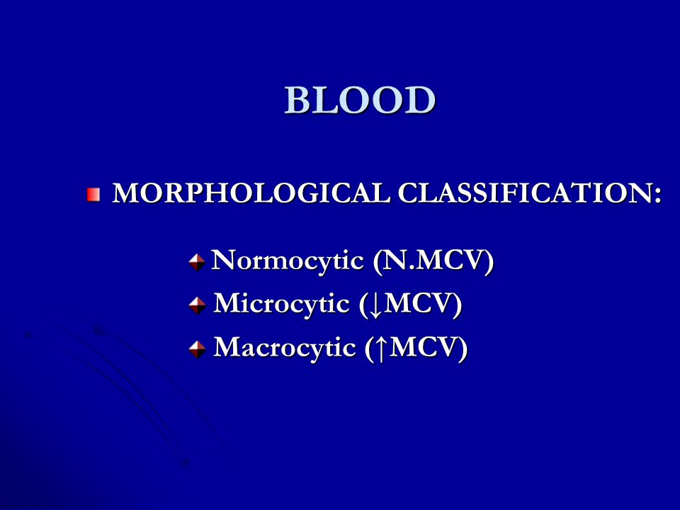 MORPHOLOGICAL CLASSIFICATION: