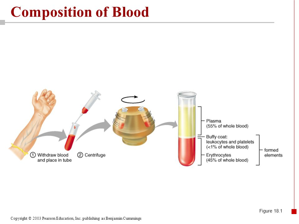 Composition of Blood Figure 18.1