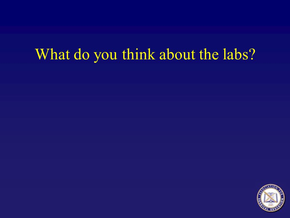 What do you think about the labs