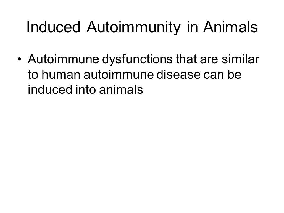 Induced Autoimmunity in Animals