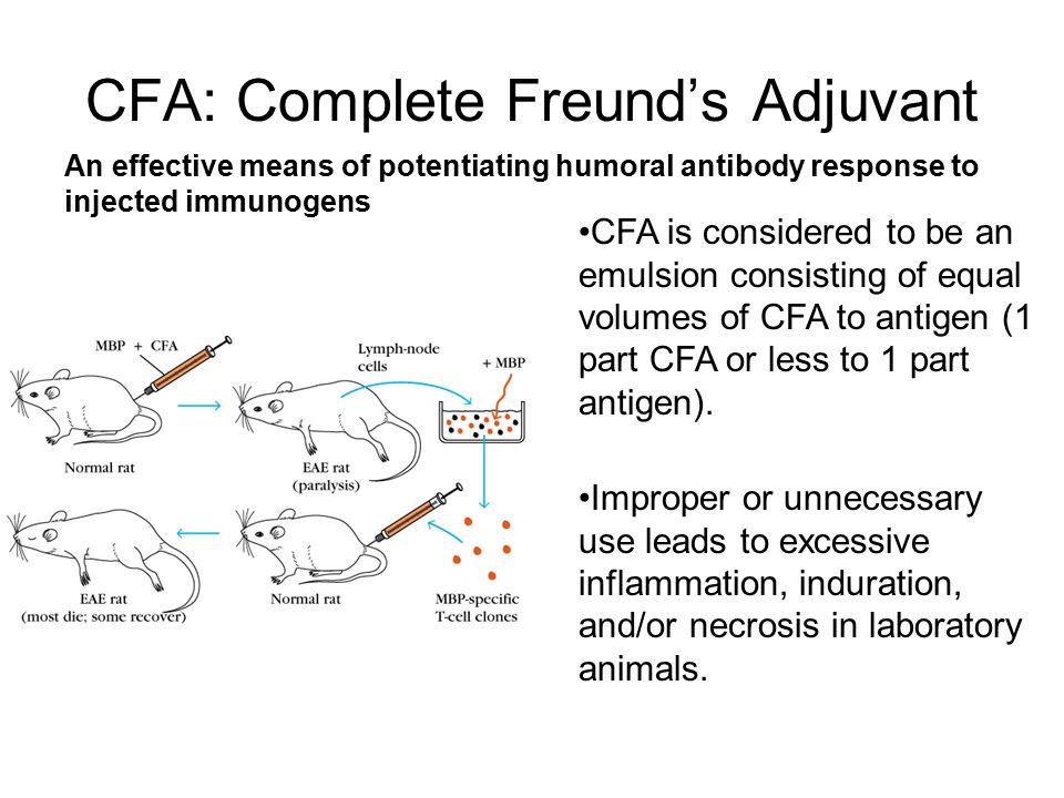 CFA: Complete Freund's Adjuvant