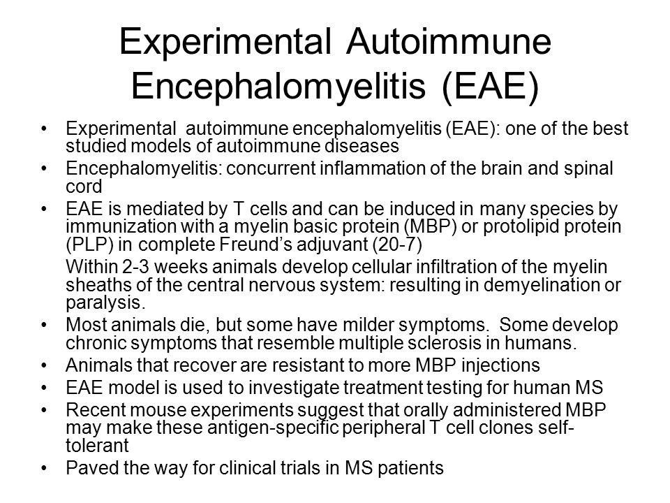 Experimental Autoimmune Encephalomyelitis (EAE)
