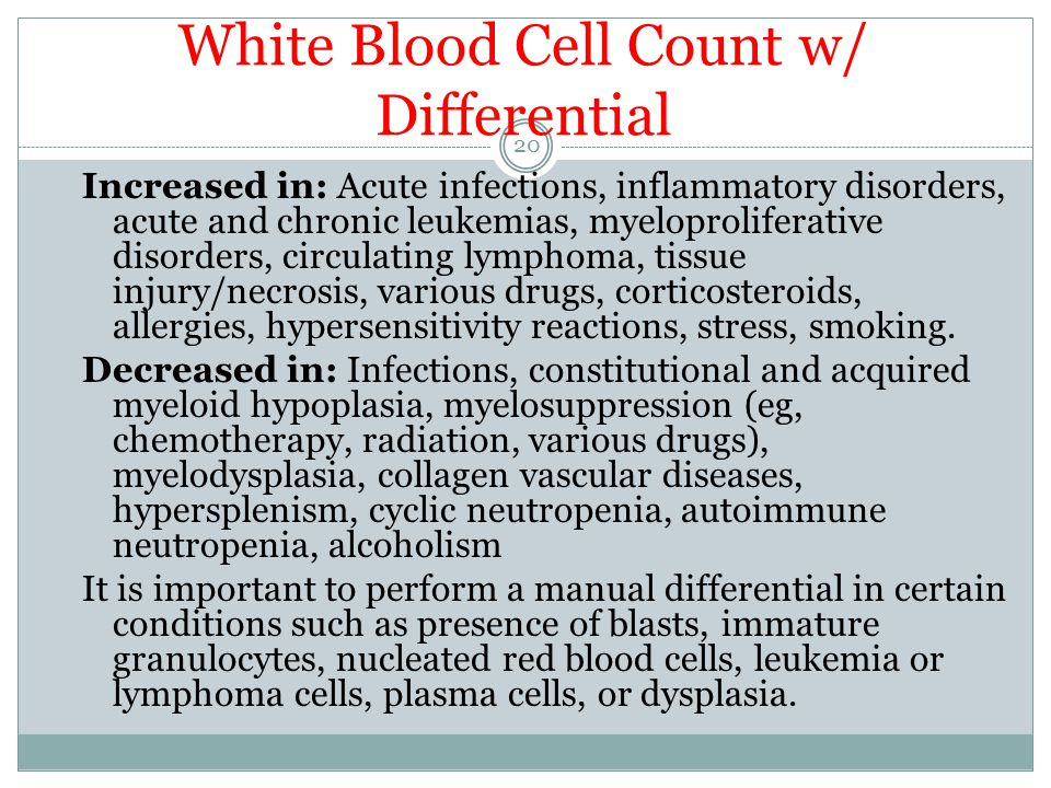 White Blood Cell Count w/ Differential