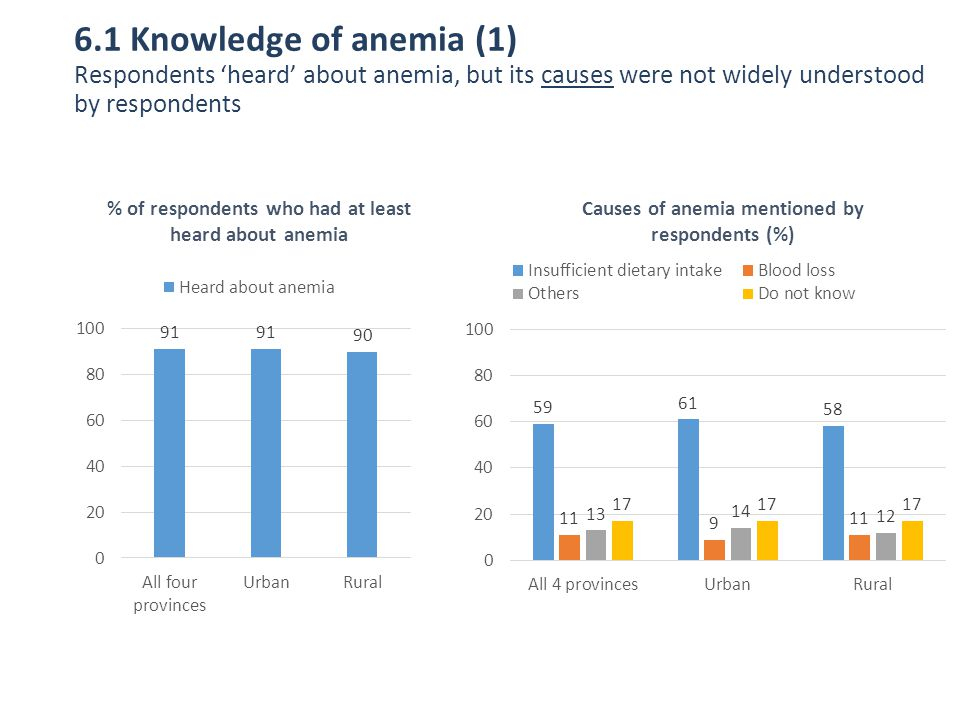 6.1 Knowledge of anemia (1) Respondents 'heard' about anemia, but its causes were not widely understood by respondents