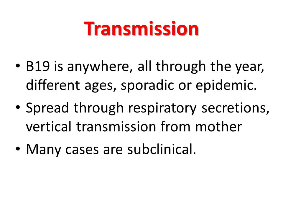 Transmission B19 is anywhere, all through the year, different ages, sporadic or epidemic.