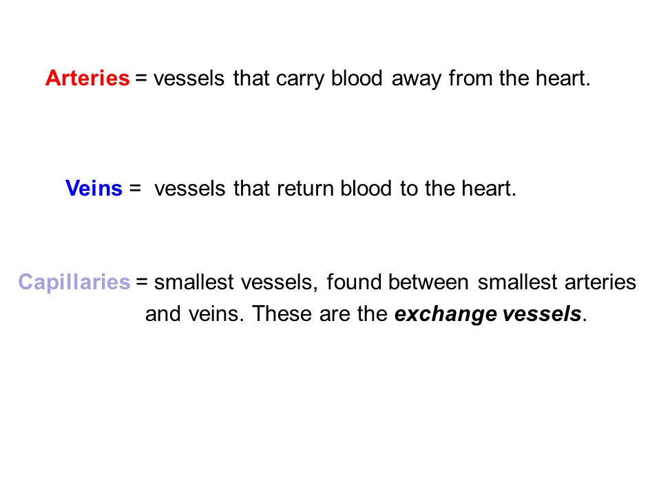 Arteries = vessels that carry blood away from the heart.