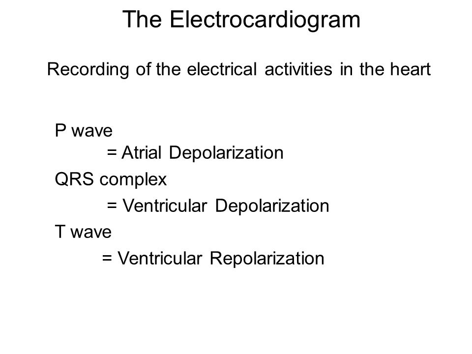 The Electrocardiogram