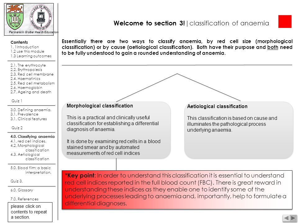 Welcome to section 3!|classification of anaemia