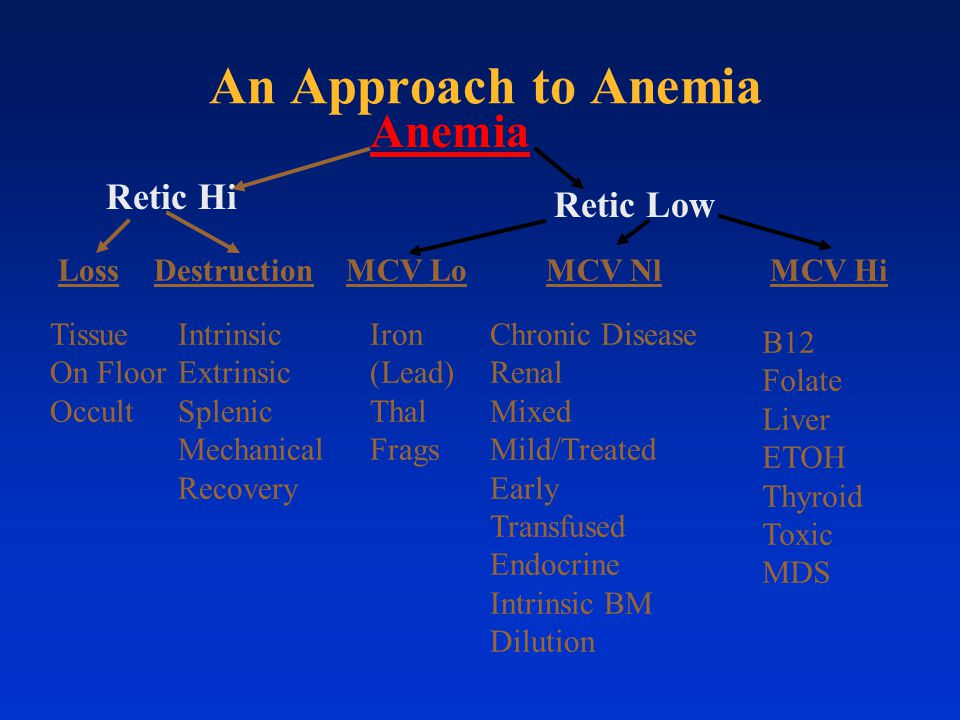 An Approach to Anemia Anemia Retic Hi Retic Low Loss Destruction