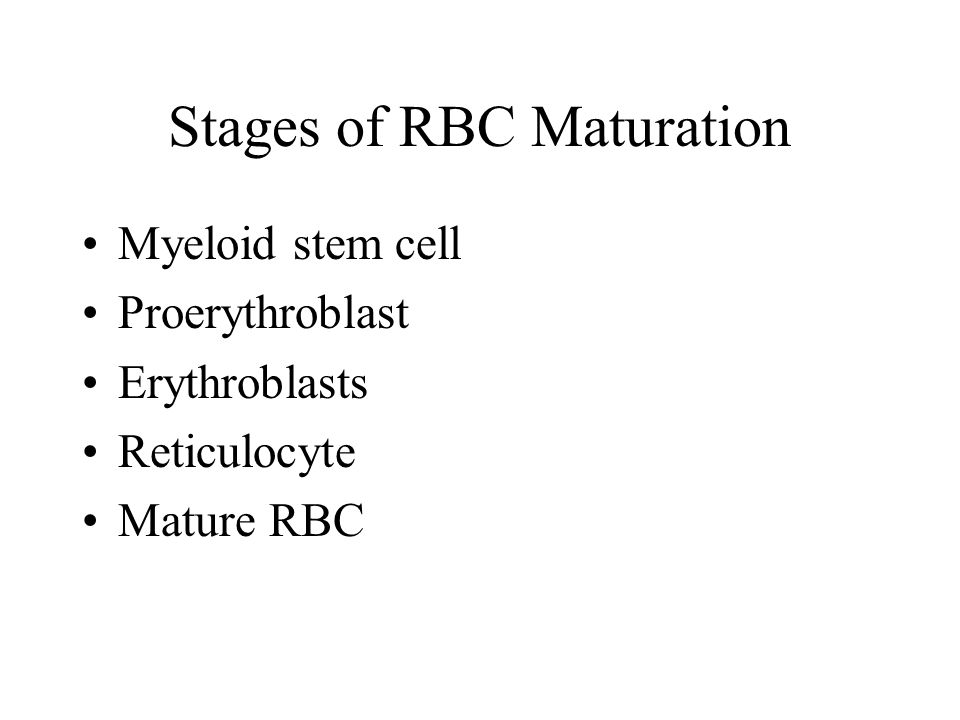 Stages of RBC Maturation
