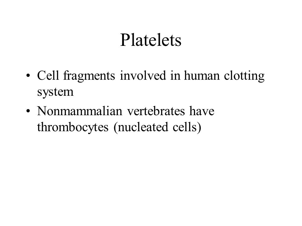 Platelets Cell fragments involved in human clotting system