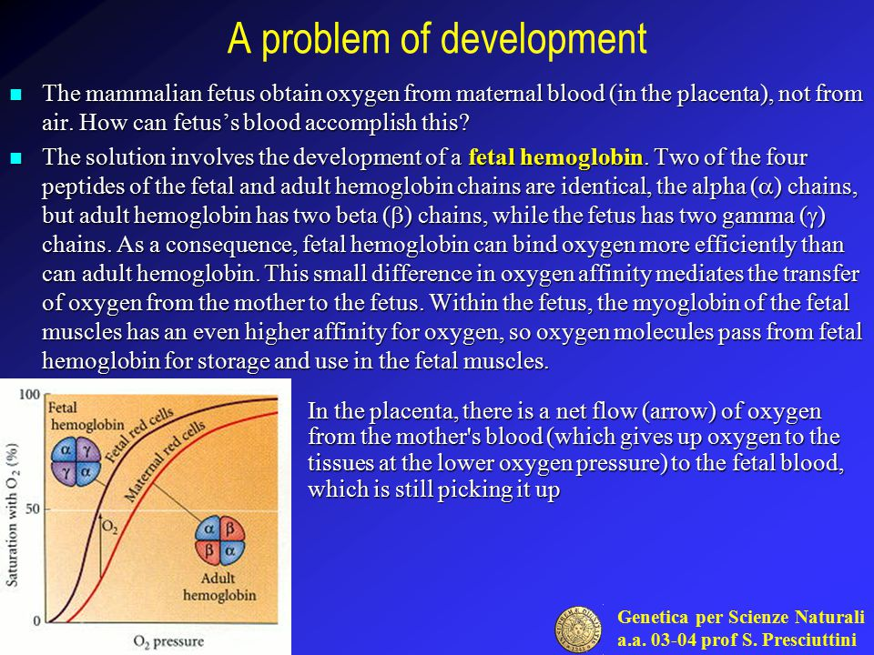 A problem of development