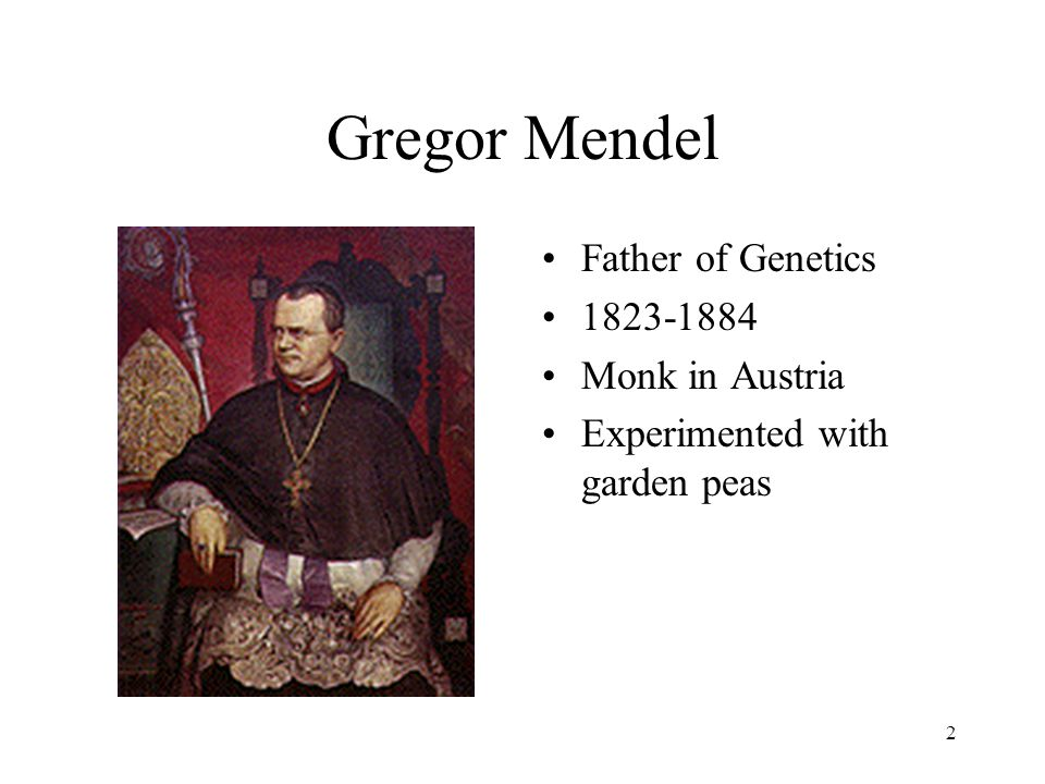 Gregor Mendel Father of Genetics 1823-1884 Monk in Austria