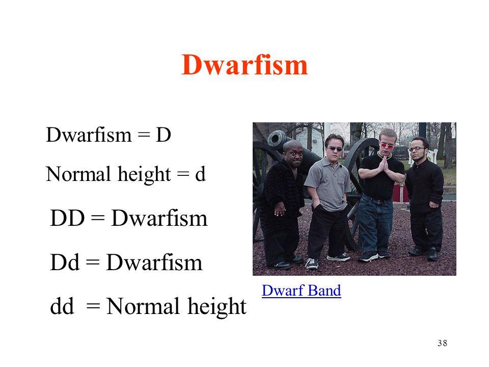 Dwarfism DD = Dwarfism Dd = Dwarfism dd = Normal height Dwarfism = D