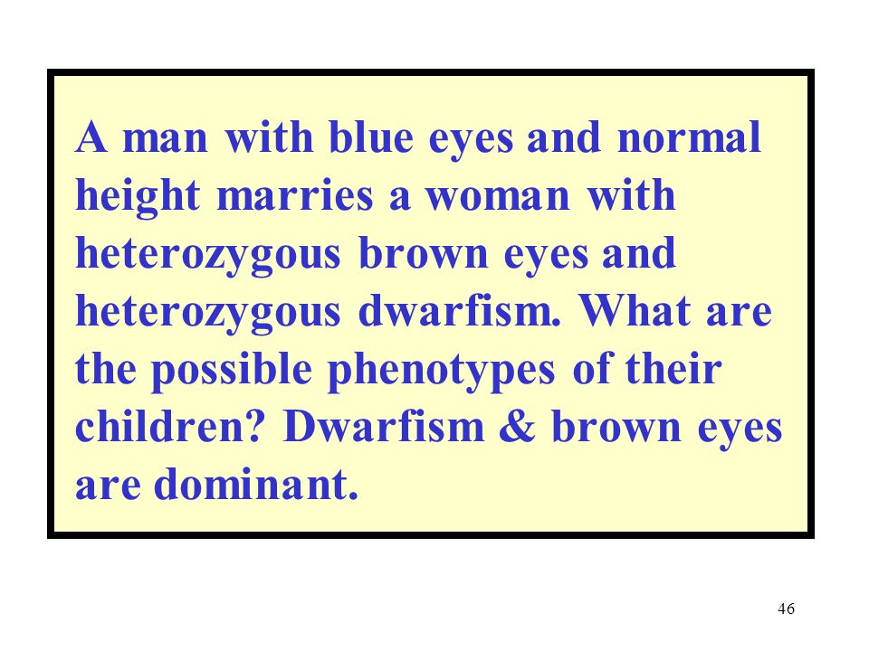A man with blue eyes and normal height marries a woman with heterozygous brown eyes and heterozygous dwarfism.