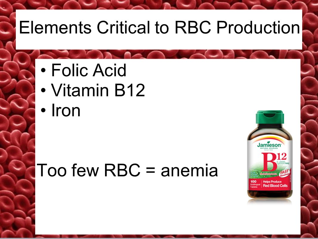 Elements Critical to RBC Production