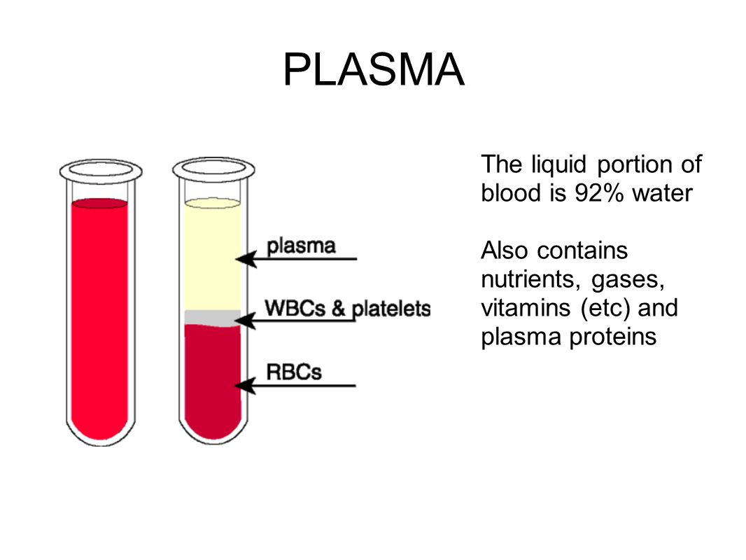PLASMA The liquid portion of blood is 92% water