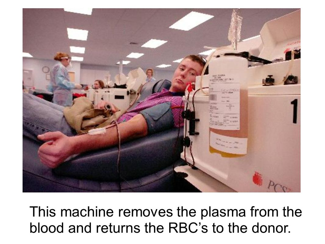 This machine removes the plasma from the blood and returns the RBC's to the donor.