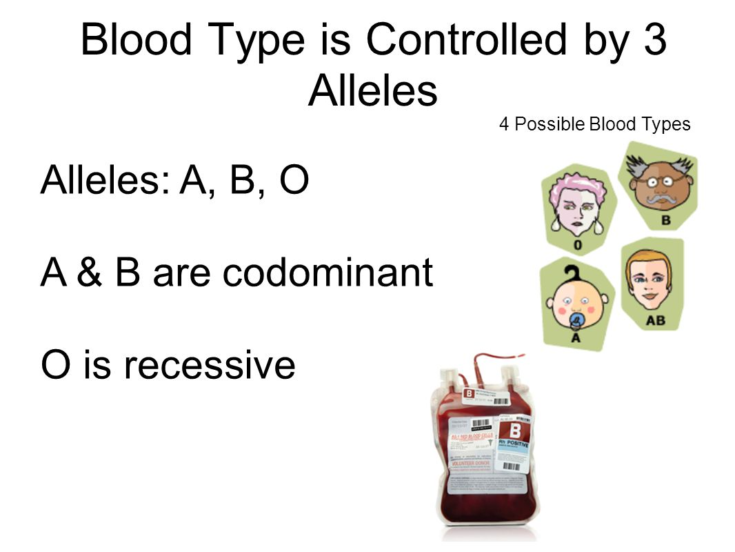 Blood Type is Controlled by 3 Alleles