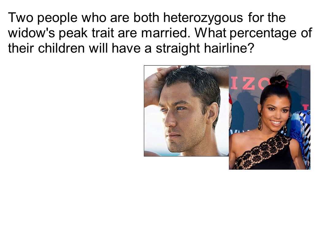 Two people who are both heterozygous for the widow s peak trait are married.