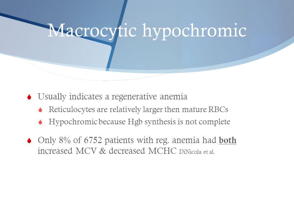 Macrocytic hypochromic