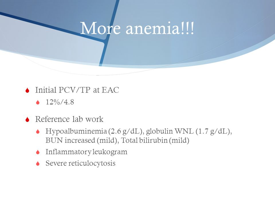 More anemia!!! Initial PCV/TP at EAC Reference lab work 12%/4.8