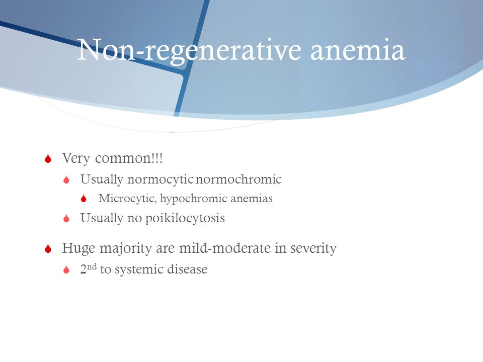 Non-regenerative anemia