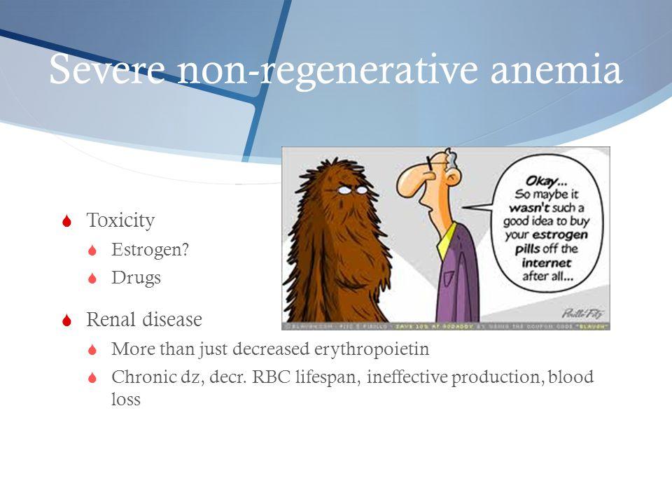 Severe non-regenerative anemia