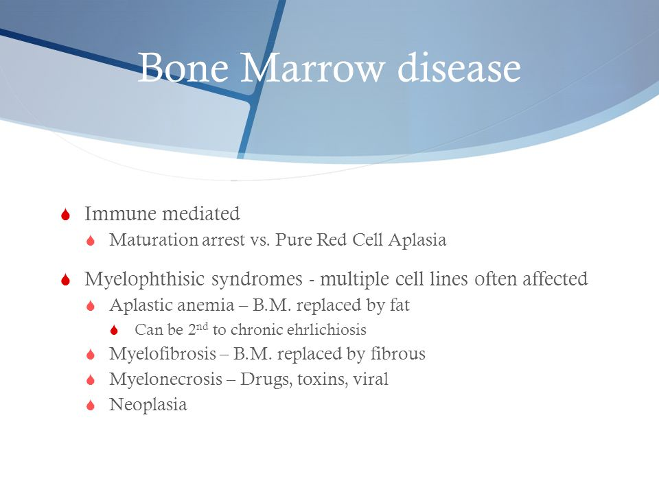 Bone Marrow disease Immune mediated